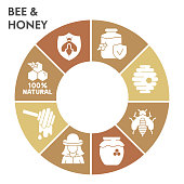 Modern honey Infographic design template. Beekeeping Infographic visualization on white background. Bee-keeper products template for presentation. Creative vector illustration for infographic