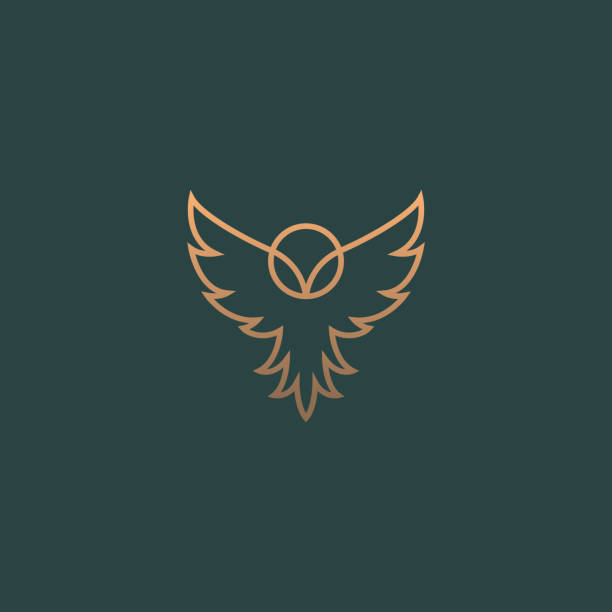 modern minimal owl illustration. linear owl logo. - sowa stock illustrations