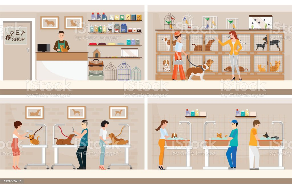 Modern pet shop with cages of animal. vector art illustration