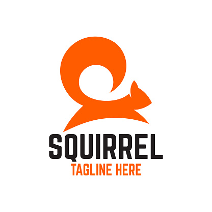 Modern squirrel logo