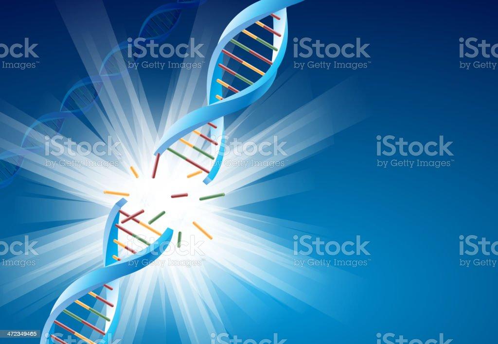 DNA molecular break royalty-free stock vector art