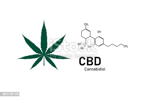 molecular structure medical  chemistry formula cannabis of the formula CBD,vector illustration