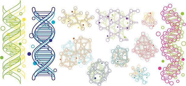 Molecular Structure Molecular Structure.eps8,ai8,jpg format are available. genetic research stock illustrations