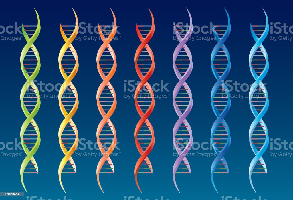 DNA molecular royalty-free stock vector art