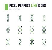 Set of 12 line style DNA molecule icons. Double helix molecule. Linear flat vector illustration. Biotech icons, medecine or science icon. Genetics sign.