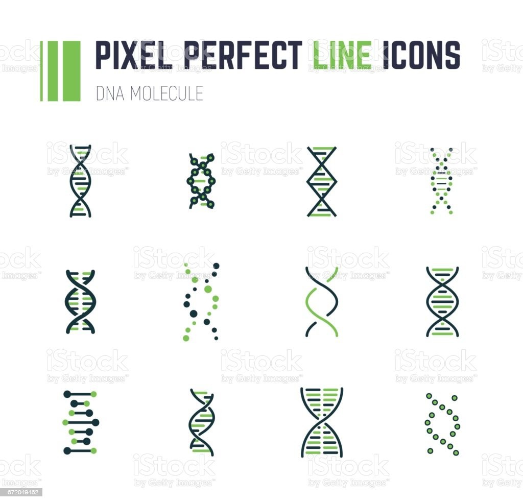 DNA molecule icon set vector art illustration