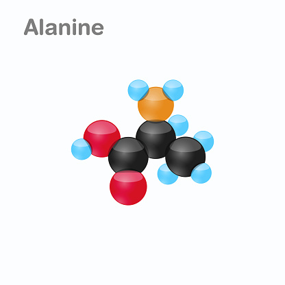 Molecule of Alanine Ala an amino acid used in the biosynthesis of proteins Vector Illustration, isolated