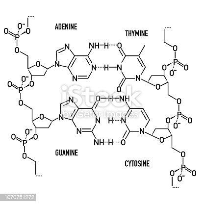 DNA molecule structural formula background. Vector illustration