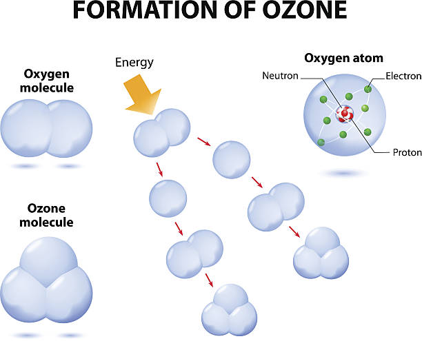 molecules ozone and oxygen vector art illustration