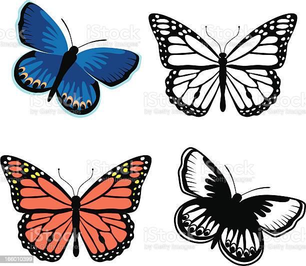 Monarch and karner blue butterflies vector id166010399?b=1&k=6&m=166010399&s=612x612&h=etismcq6hjkydphwedpx1 efhhbh5op5 uwnuokmqiw=