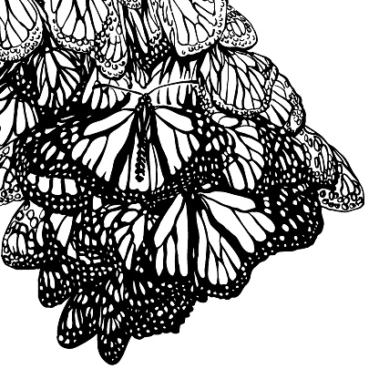 Monarch butterflies migration. Abstract vector illustration