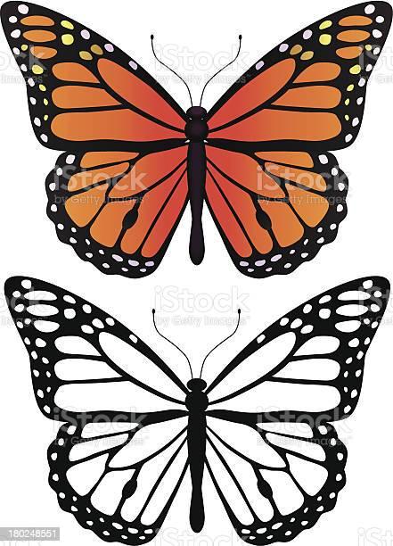 Monarch butterfly vector id180248551?b=1&k=6&m=180248551&s=612x612&h=my1gie7npqk  ttyqjpnpgpfrfrn4ez6nwy97yfdnpg=