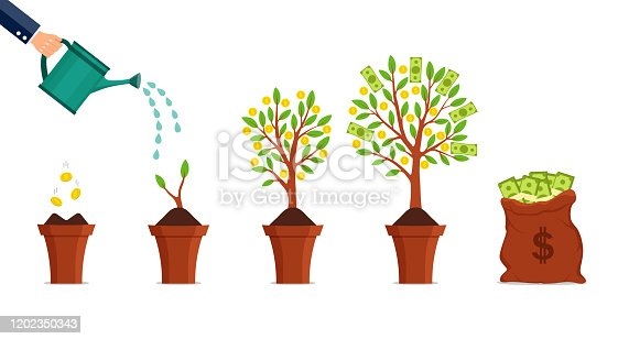 Money tree growing process. Financial growth concept. Dollar investment in business. Hand watering growing money plant with bitcoin. Financial green tree on isolated background. vector illustration