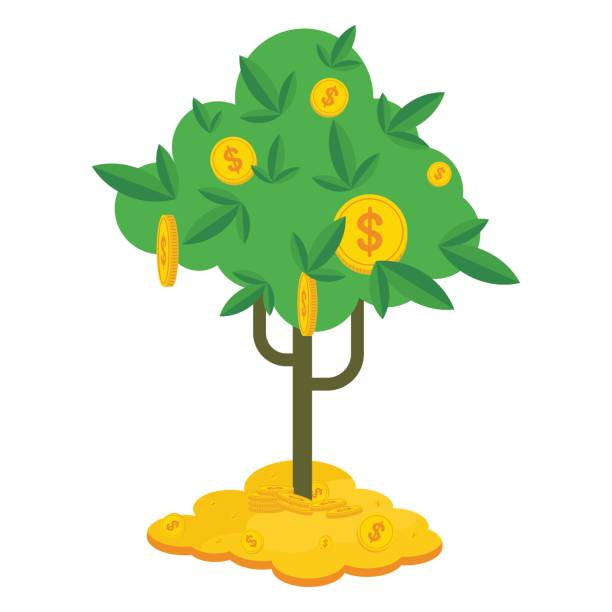 money tree on money Money tree with gold coins and paper dollars. Symbol of success, wealth and power. Finance and banks, savings and investments. Flat vector cartoon illustration. Objects isolated on a white background. money tree stock illustrations