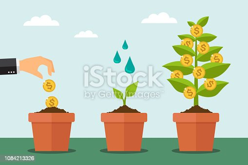 Money tree and financial growth process. Vector illustrator