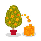 Money tree with dollars. Decorative plant in flower pots