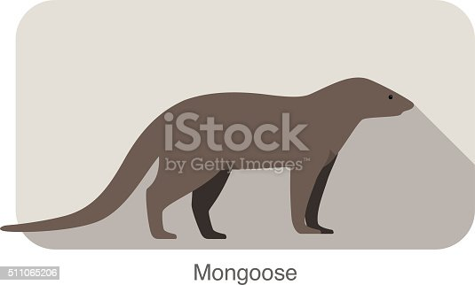 mongoose standing and watching, vector