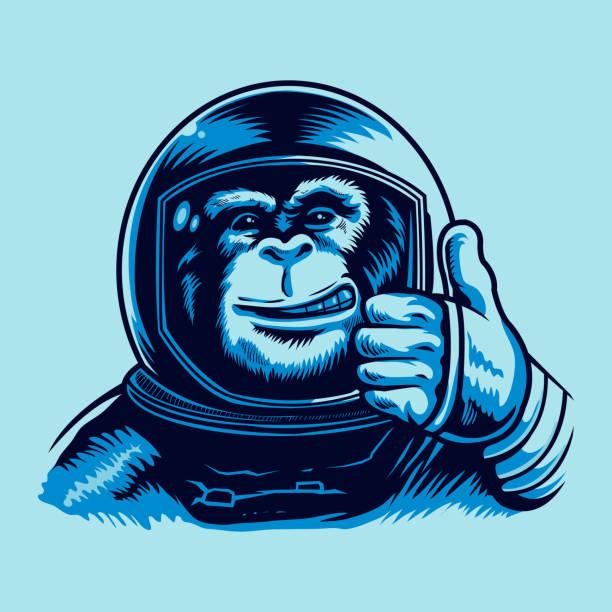 Monkey Astronaut Vector illustration of a Monkey Astronaut in Spacesuit. monkey stock illustrations