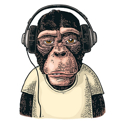 Monkey dressed t-shirt hear headphones. Vintage color engraving