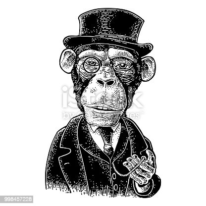 Monkey gentleman holding a watch and dressed in a hat, suit, waistcoat. Vintage black engraving illustration for poster. Isolated on white background. Hand drawn design element for label and poster