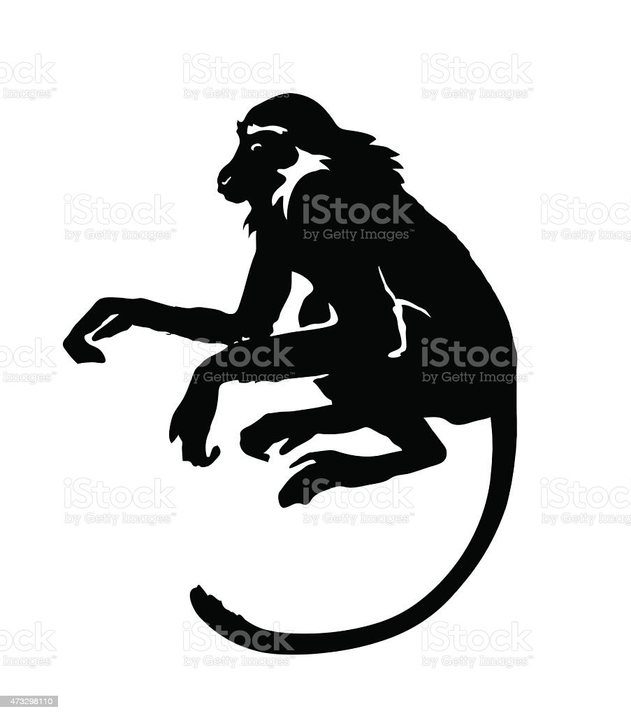 monkey hand drawn silhouette of animal on white background stock