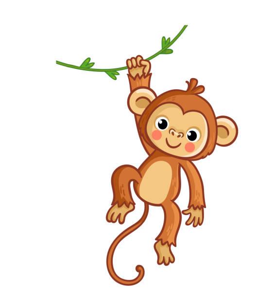 stockillustraties, clipart, cartoons en iconen met aap opknoping op liana. vector illustratie. schattig dier. - schommelen bungelen