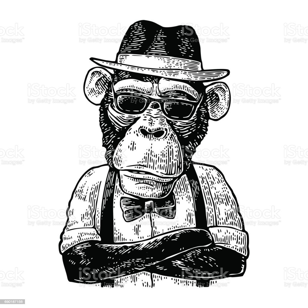 Monkey hipster with arms crossedin in hat, shirt, glasses and bow tie - ilustración de arte vectorial