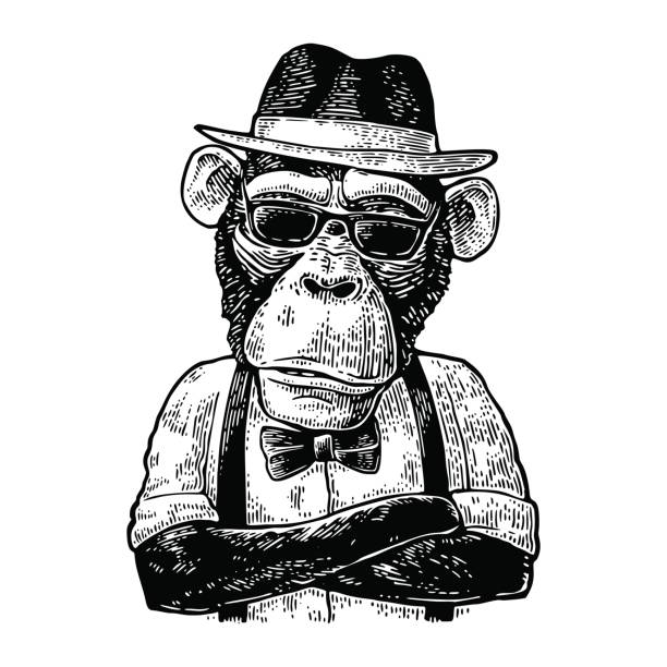 Monkey hipster with arms crossedin in hat, shirt, glasses and bow tie - Illustration vectorielle