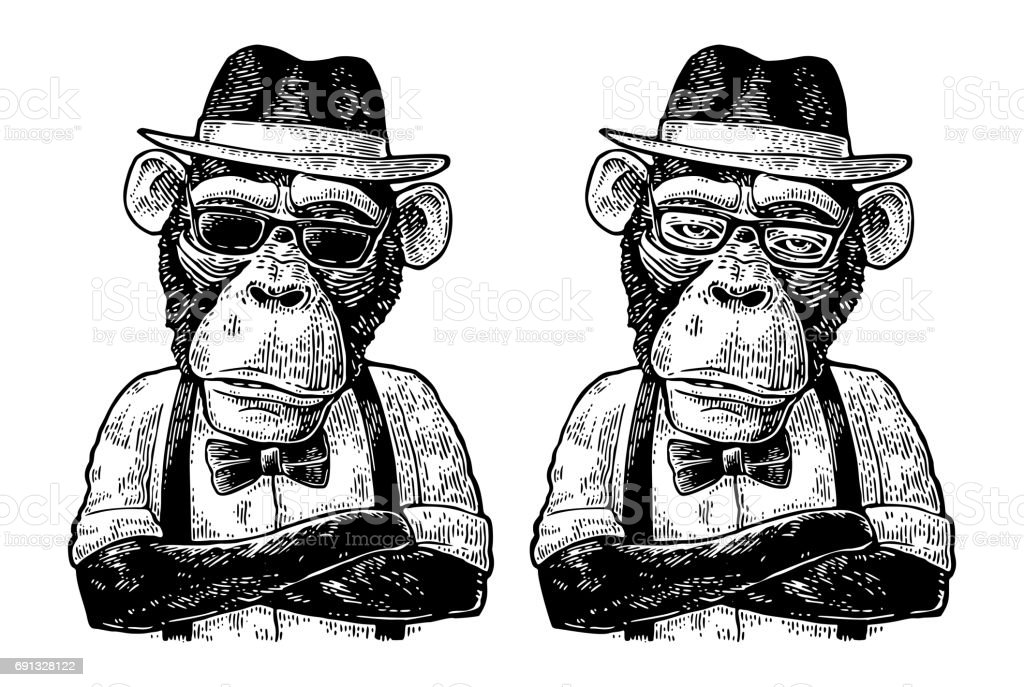 Ilustración de Hipster De Mono Con Brazos Crossedin Sombrero Camisa ...