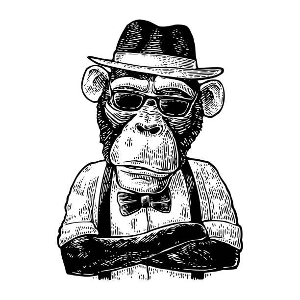 Affe-Hipster mit Armen Crossedin Hut, Hemd, Brille und Fliege – Vektorgrafik