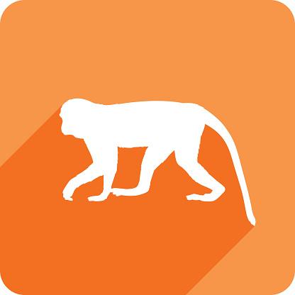 Monkey Icon Silhouette