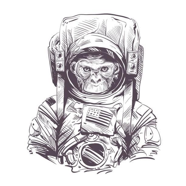 affe in astronaut anzug. handgezeichnet vektor-illustration - neuweltaffen und hundsaffen stock-grafiken, -clipart, -cartoons und -symbole
