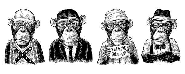 monkey in human clothes. redneck, businessman, hipster, biker, soldier, beggar. - monkey stock illustrations