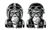 Monkey in the motorcycle helmet and glasses. Hell monkeys and 1 lettering on the waistcoat. Vintage black engraving illustration for poster and t-shirt design bike club. Isolated on white background.