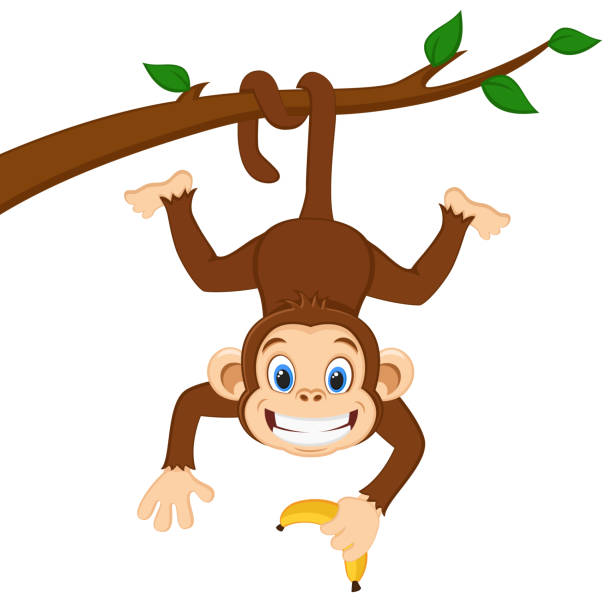 monkey is hanging on a branch and holding a banana on a white. - monkey stock illustrations