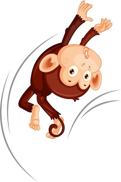 Ein Affe springt auf weißem Hintergrund – Vektorgrafik