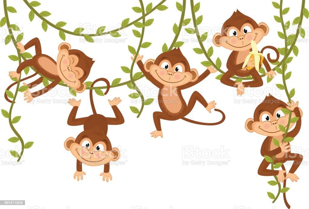 Affe auf Rebe – Vektorgrafik