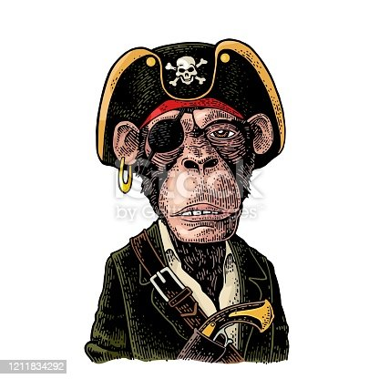 istock Monkey pirate with gun dressed in a cocked hat. Engraving 1211834292