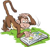 monkey reading a book