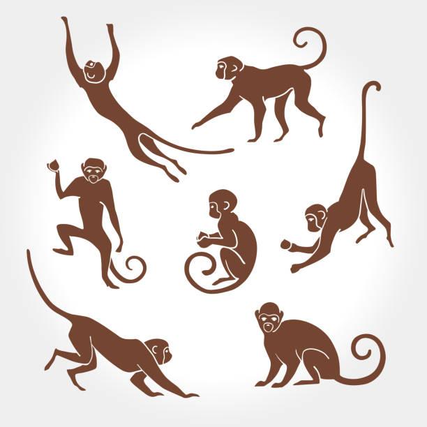monkey silhouette - monkey stock illustrations