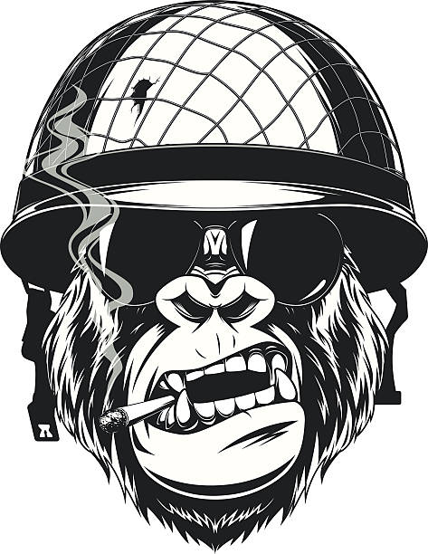 monkey soldier with a cigarette - gorilla stock illustrations