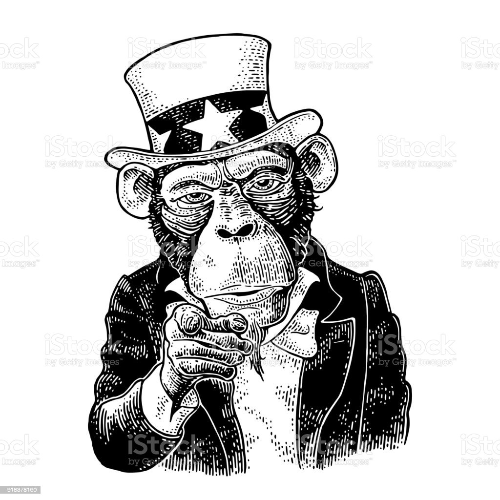 monkey uncle sam with pointing finger at viewer vintage engraving rh istockphoto com Pointing Finger Emoji Finger Pointing Down