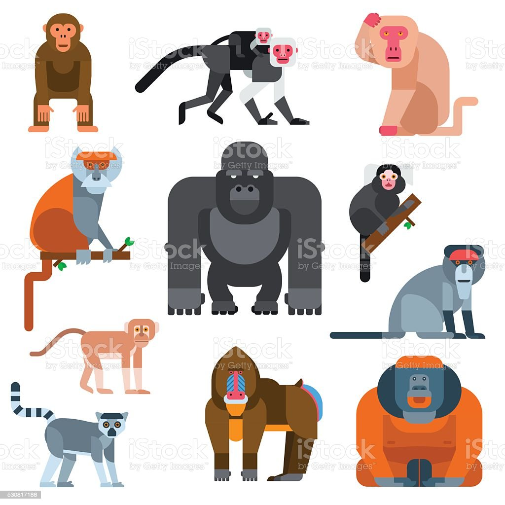Monkey vector illustration vector art illustration