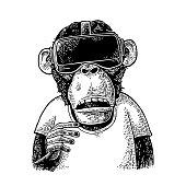 Monkey wearing virtual reality headset and t-shirt. Vintage black engraving