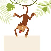 Playful monkey hanging on its tail and holding the banner. Copy space for tthe text.