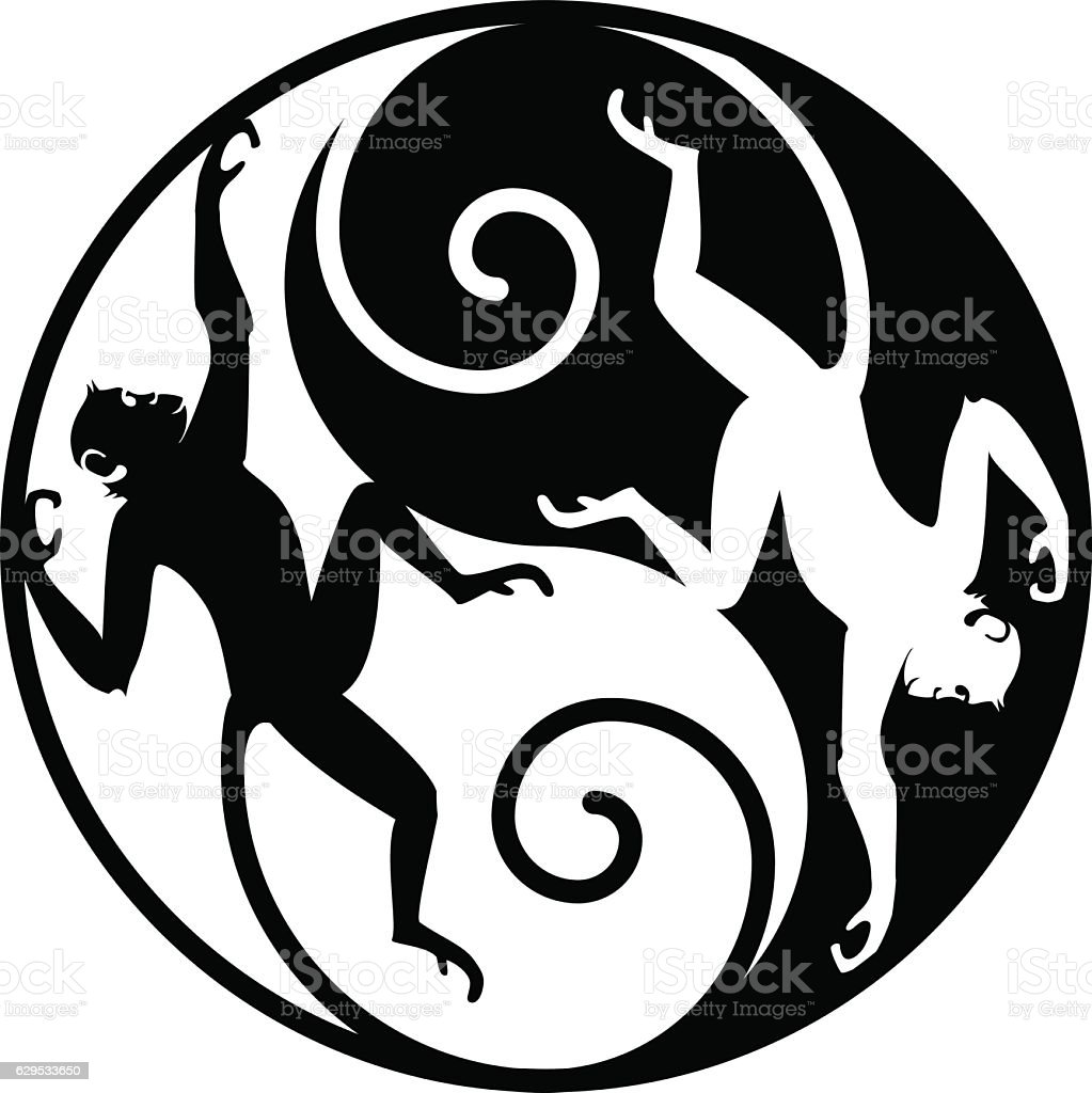 Monkey Yin Yang Stock Vector Art More Images Of Animal 629533650