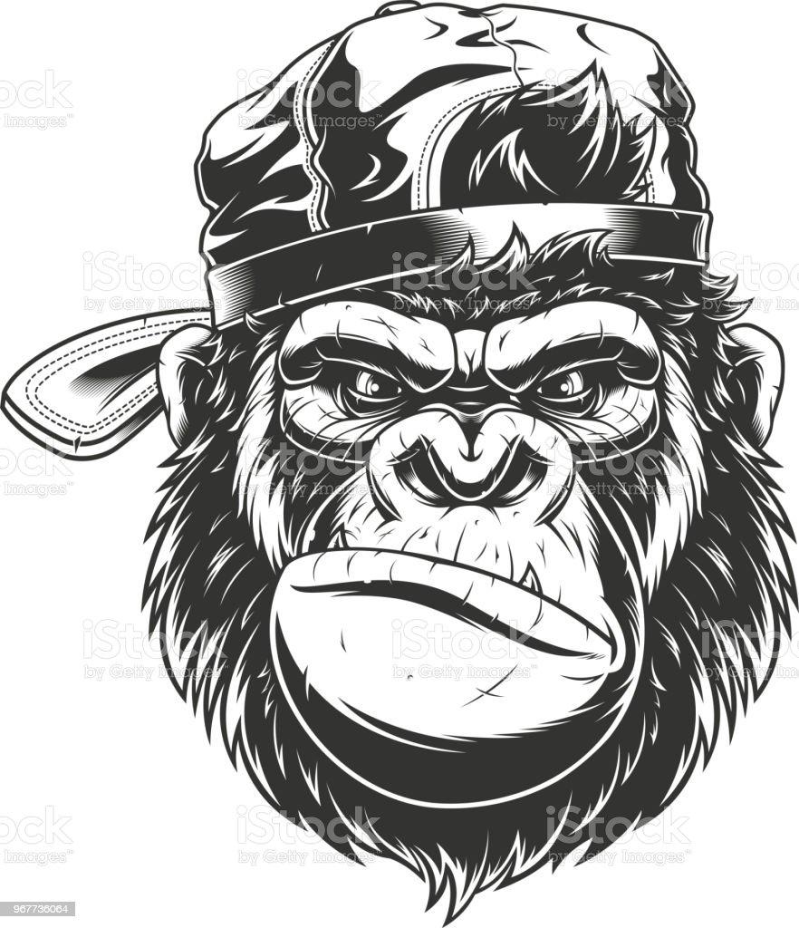 6b7a42b273295 Cabeça de macaco em um boné de beisebol vetor de cabeça de macaco em um boné