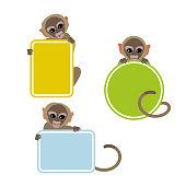 Monkeys Holding Colorful Frames