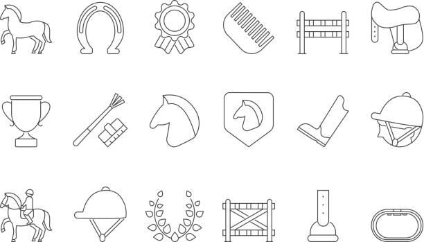 mono liniensymbole pferdesport zu isolieren, auf weiß - reiter stock-grafiken, -clipart, -cartoons und -symbole