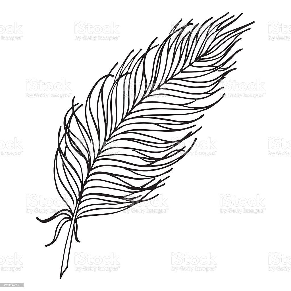 モノクロの白黒鳥の羽のベクトルイラストのアート 1人のベクターアート